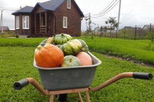 Как разделить земельный участок, если собственник один