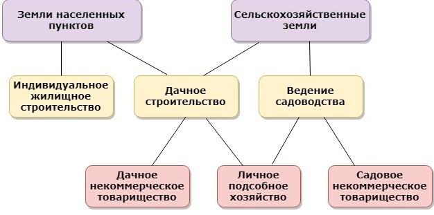 Как узнать вид разрешенного использования и категорию земли