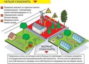 Как установить границы земельного участка в 2020 году